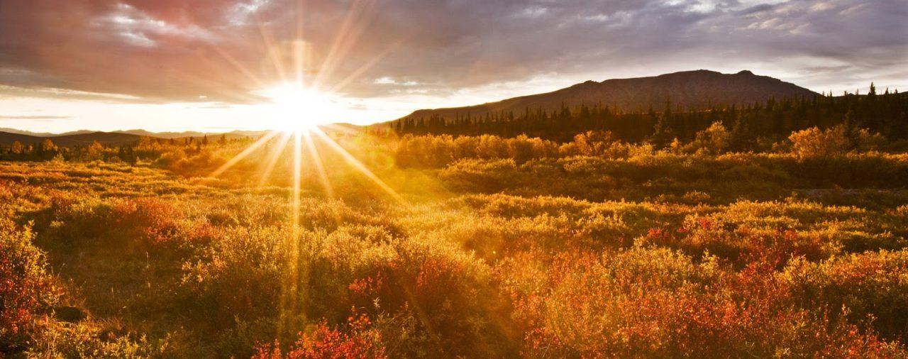 Buenos días, Señor | Lunes 12 de octubre de 2020 | Laudes