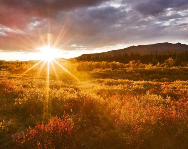 Buenos días, Señor | Lunes 15 de abril de 2019 | Laudes