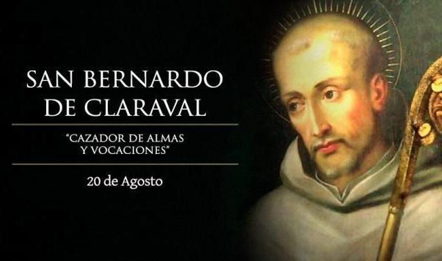 Agosto 20 | San Bernardo